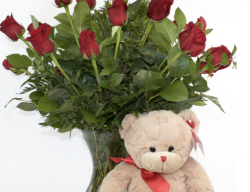 View Our Award-Winning Roses and Get a Head Start on Valentine's Day!