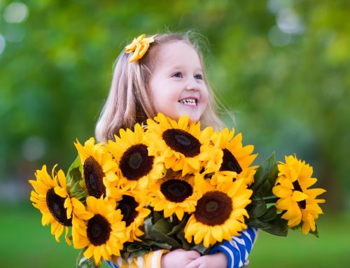 Same Day Flower Delivery To Spencerport