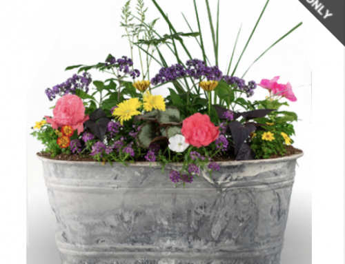 Send a Porch Planter For Mother's Day