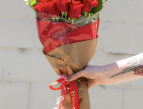 June is the Time For Roses — Celebrating National Rose Month