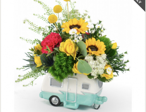 Celebrate Father's Day with Flowers, Plants, and Gifts from Rockcastle!