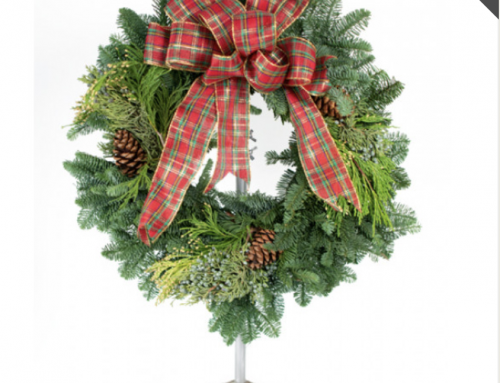 Our Finger Lakes Showrooms are Brimming with Holiday Cheer!